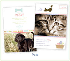 Polka Dot Design Pets