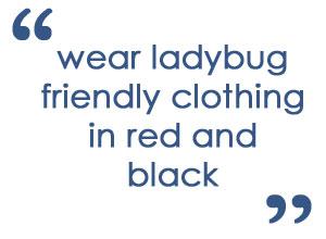 Ladybug Party Costumes