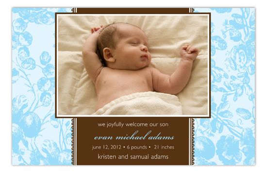 Banded Toile Blue Photo Card