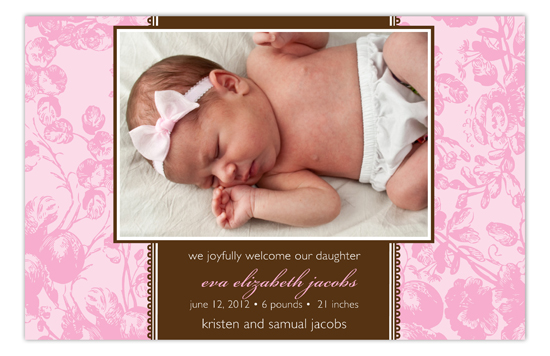 Banded Toile Pink Photo Card