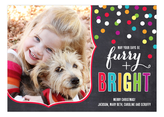Furry Wishes Confetti Photo Card