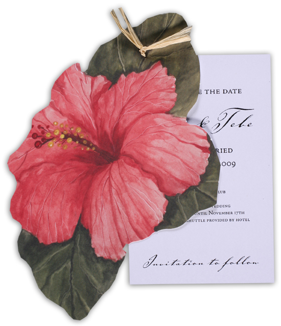 Pink Hibiscus Invitation