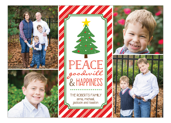 Peace Goodwill and Happiness Holiday Photo Card