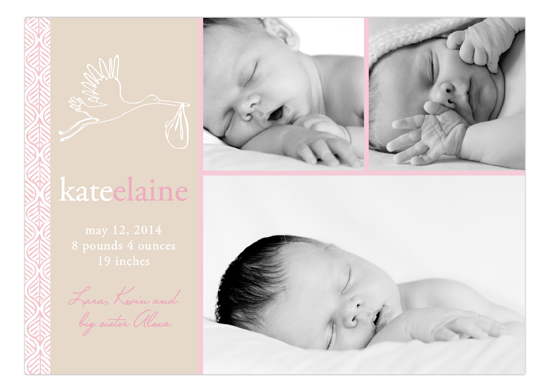 Simple Stork Girl Photo Card Birth Announcements