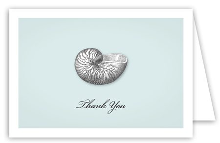 Summer Seashells Note Card