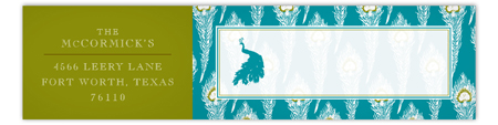 Turquoise Peacock Envelope Wrap