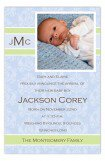 Baby Boy Damask Photo Card