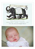 Blue Elephant Parade Birth Photo Card
