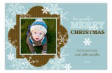 Brown Arctic Blast Photo Card