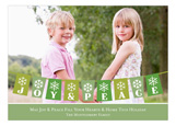 Bunting Holiday Green Photo Card