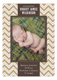 Chevron Greeting Tan Photo Card
