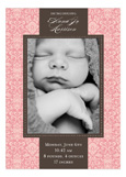 Damask Greeting Girl Photo Card