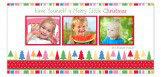 Festive Forest Photo Card