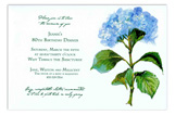 French Blue Invitation