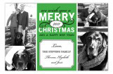 Green Merry Christmas Photo Card