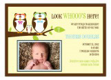 Happy Boy Owls Gender Neutral Photo Card