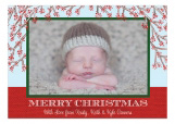Holiday Branches Photo Card