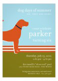 Orange Dog Days Invitation