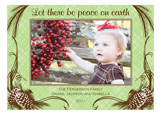 Peaceful Pine Cones Photo Card