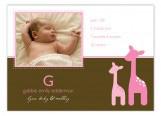 Pink Onlooking Giraffes Photo Card