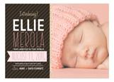 Pink With Giraffe + Chocolate Stripes Photo Card