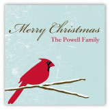Seasonal Songbird Square Sticker