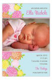 Sweet Zinnia Photo Card